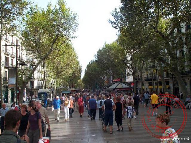 Stedentrip Barcelona - Flaneren over de Ramblas