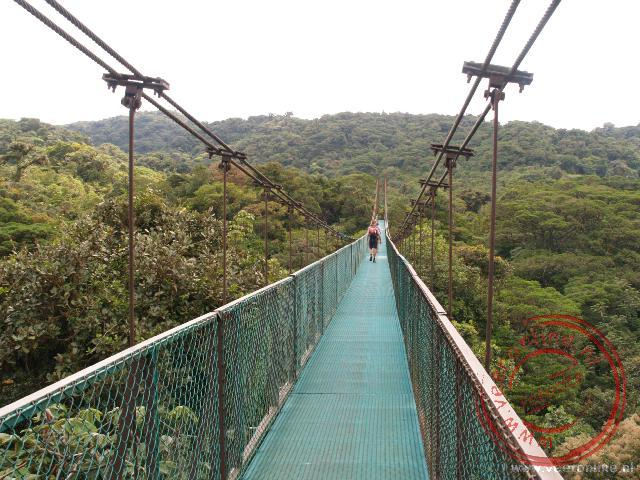 Rondreis Costa Rica - De langste hangbrug in het Selvature park is 160 meter lang